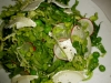 Salad of Seasonal Greens